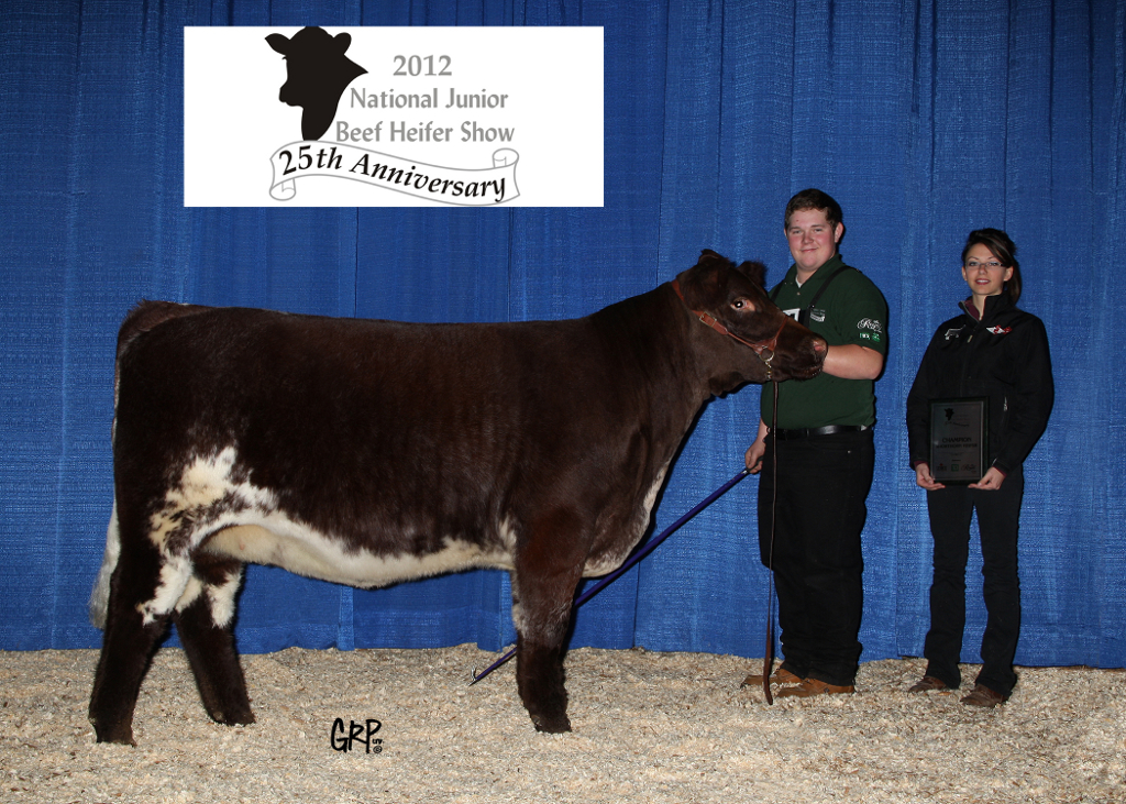 2012 National Junior Beef Heifer Show, Champion Shorthorn